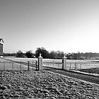 Frosty Morning by Simon Pattinson