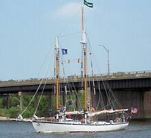 Appledore V - Parade of Sails by Francis LaLonde