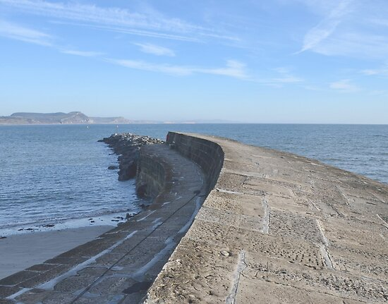 Harbour Wall At Lyme Dorset by lynn carter