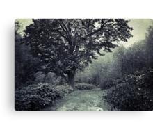 Tree of life 2 Canvas Print
