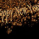 Happy New Year 2013 Gold Fireworks  by campyphotos