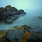 The Rocks of Whale Cove by osprey-Ian