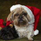 Santa I am tired  by Nicole  Markmann Nelson