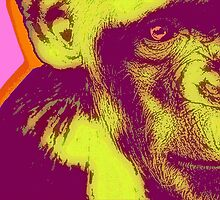 CHIMPANZEE POP-ART ONE by OTIS PORRITT
