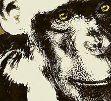 CHIMPANZEE POP-ART THREE by OTIS PORRITT