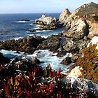 Coastal Beauty by Travel-Hop