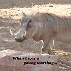 Pumba Warthog Hakuna Matata by A4wiseowl