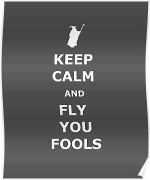KEEP CALM AND FLY YOU FOOLS by karlangas