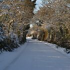 Snowy lane by Desaster