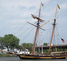 Pride of Baltimore II - Parade of Sails (3) by Francis LaLonde