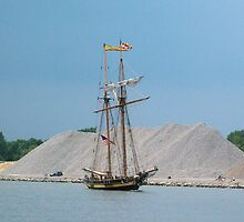 Pride of Baltimore II - Parade of Sails - Retreat by Francis LaLonde