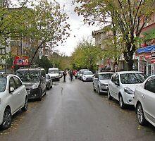 A street in Anıttepe by rasim1