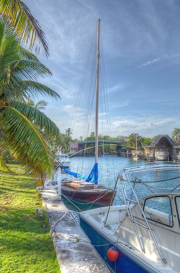 A Dreamy Backyard in Nassau, The Bahamas by 242Digital