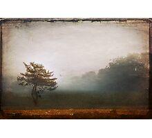 Season Of Mists Photographic Print