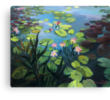 Lotus Flowers  Canvas Print