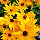 """""""Yellow Flowers 20"""" by Chip Fatula by njchip123"""