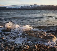 Icy Alaskan Beach by mcornelius
