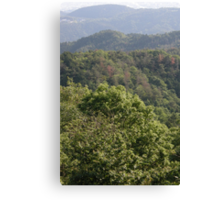 View on mountains Canvas Print