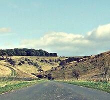 Yorkshire Moors by Jordan Horner