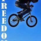 Freedom 1 by clickman818