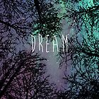 Dream by Hannah Julius