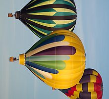 Hot Air Balloons - iPad Case by SynappedPhoto