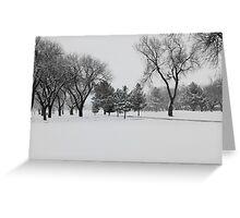 Texas Snow Greeting Card