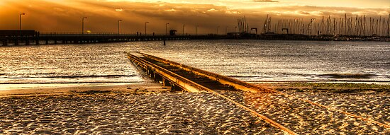 Golden Tracks 1 by JHP Unique and Beautiful Images