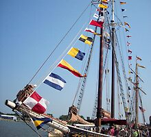 Roseway - Bay City - Tall Ship Celebration (2010) by Francis LaLonde