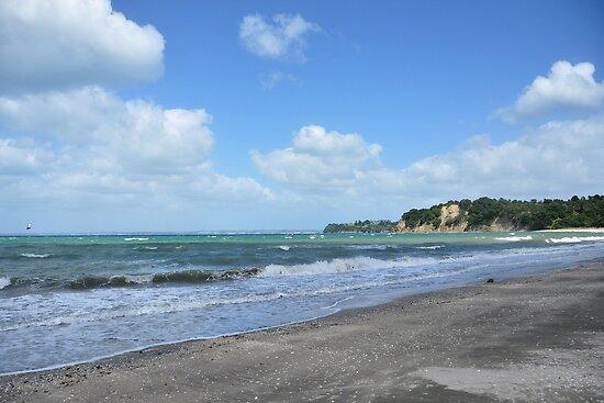 Shakespeare Bay, New Zealand by Heather Thorsen