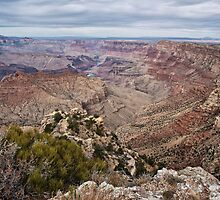 The Grand Canyon (South Rim) by James Watkins