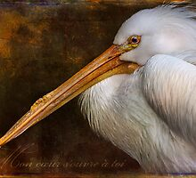 Finer Feathered Friends by alan shapiro