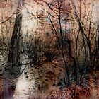 Winter Trees 4 by Dianne Phelps