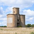 Kansas Grain Elevator on Rayls Hill by kgarlowpiper