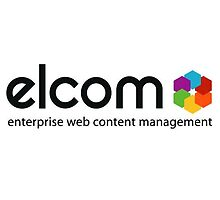 The best web content management developer by elsietorres