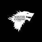 Game of Thrones - Stark house by blackstarshop
