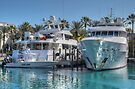 Yachts docked at the Atlantis Marina in Paradise Island, The Bahamas by 242Digital