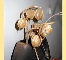 Organic materials-Show piece   by BasantSoni