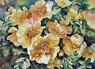 Margaret's Roses by Ann Mortimer