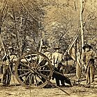 Confederate Artillery Battery by Nicole  Scholz