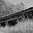 Dad's Garage b/w by Carolyn Clark