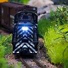 Toy Train I ~ Minatures Series by Jeanie93