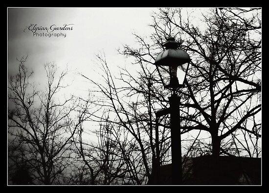 Williamsburg 2011 by ShannonElaine