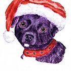 Christmas Dog by Annie Zeno