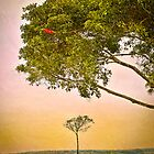 Lost childhood retro grunge style red kite in tree by campyphotos