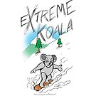 Extreme Koala- Snowboarder by Colin Wells