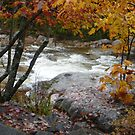 Rocky Gorge, Swift River, New Hampshire by nealbarnett