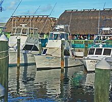 ft pierce marina by cliffordc1