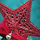 Christmas Star by Ami  Wilber-Mosher