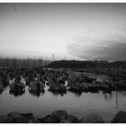Lerici (black & white) by stephane j. allier